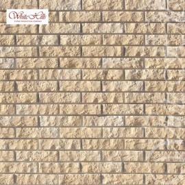 Alten Brick